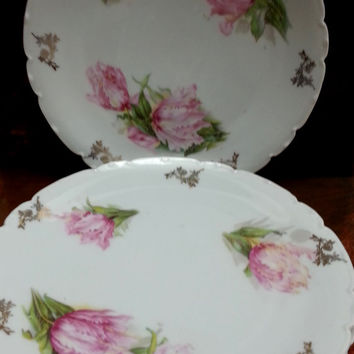 "Tirschenreuth Porcelain Plates Set 3 Bavaria Pink Tulip Floral Gilded Scalloped Antique 8 1/2"" D"
