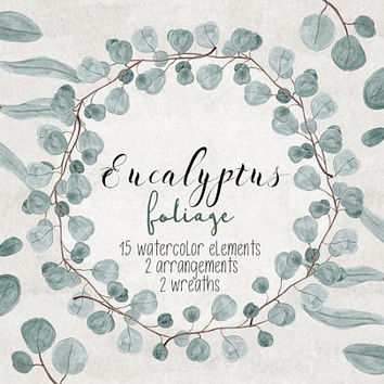 Eucalyptus foliage | watercolor hand painted, clip art, branches, leaves, greenery, silver dollar eucalyptus, invites, arrangements