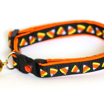 Halloween Cat Collar - Candy Corn on Black - Large(standard) Size Collar