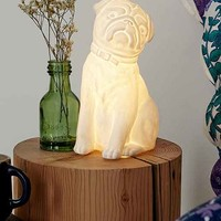 Plum & Bow Pug Table Lamp- White One