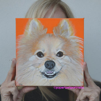 Pomeranian, custom pet paintings, pet portrait, Dog art, Dog paintings, custom dog portraits, dog portraits, orange,