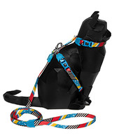 Brooklyn   Cat Harness with Leash