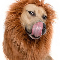Lion Mane costume for large dogs