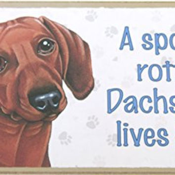 Dachshund, Brown, Dog Lovers, A Spoiled Rotten Dachshund Lives Here! Made in America, Wood Dog Sign, Wall Dog Decor, 5x10