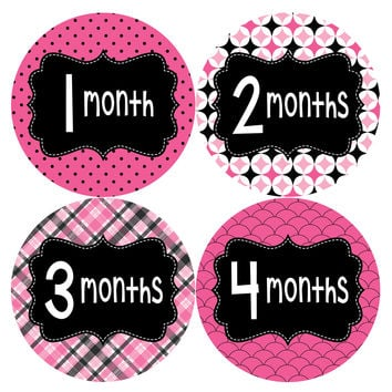 Baby Girl Monthly Baby Stickers Style #401