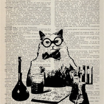 Chemistry Cat Meme Vintage Dictionary Art Print Upcycled Recycled 5x7 Book Page - Science Teacher Cat