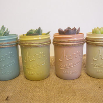 Custom Color Potted Succulent Mason Jars Rustic Vintage Country Wedding or Baby Shower Favors