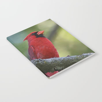 Cardinal Series I Notebook by Theresa Campbell D'August Art