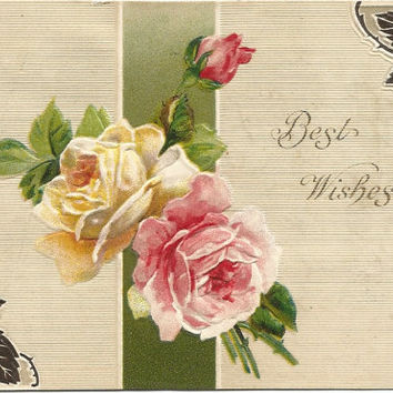 Pink Rose White Rose Pink Rose Bud Best Wishes Vintage Postcards 1910 Ephemera
