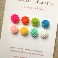 multi-colored chrysanthemum magnets, set of 8 small strong magnets, dorm decor, bulletin board