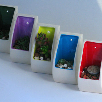 Wall Pocket A Sweet Succulent Planter comes with by jfishdesigns