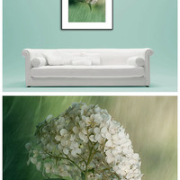 Hydrangea Photo Print, Flower Photography Print, Floral Wall Art Print, White, Mint Green Wall Decor, Bedroom Art Print, Barthroom Art