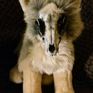 Adopt North: the Coyote Skull Plushie (Soft Mount Stuffed Animal Plush Doll Monster Halloween Wolf Fox Dog Zombie Taxidermy) Roxxi1018