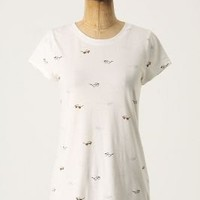 Printed Boy Tee, Spectacles - Anthropologie.com