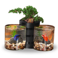 eLive Betta Cylinder Tank Set & Desktop Planter Black