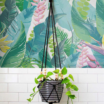 Calathea Leaves Pattern Wallpaper - Removable Wallpaper - Calathea Wallpaper - Wall Sticker - Calathea leaves Self Adhesive Wallpaper