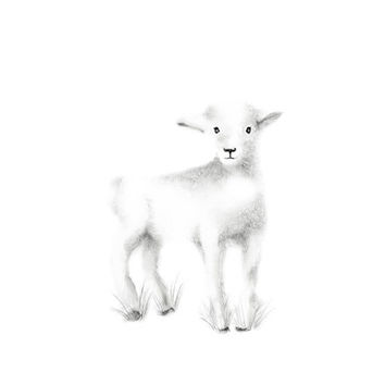 Lamb Nursery Art, Grey Nursery, Farm Animal Nursery, Animal Sketch Print, Childrens Art, Baby Animal art, Pencil Drawing, baby Wall Decor