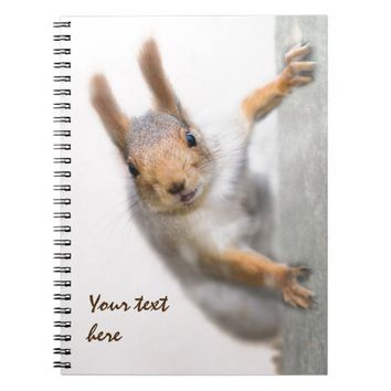 Curious squirrel spiral notebook