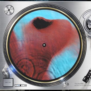 Pink Floyd Meddle Album Cover artwork Slip mat Turntable Vinyl decor Record collection psych Rock Music lovers gift
