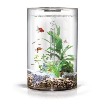 biUbe Pure Aquarium with Halogen Light, Clear, 9 Gallons