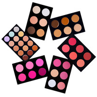 6 Layered Foundation, Concealer, Camouflage, Contour, Blush Palette Makeup Kit