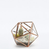Urban Grow Star Terrarium Planter in Copper - Urban Outfitters
