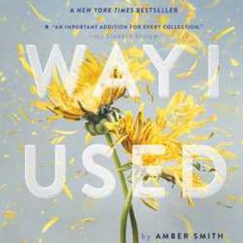The Way I Used to Be: Amber Smith: 9781481449366: