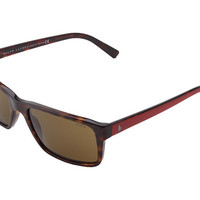 POLO Ralph Lauren Sunglasses - Dark Tortoise + Red Arms
