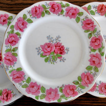 Vintage Queen Ann Lady Alexander Rose china plates, china salad plates, set of 3, fine bone china plates, 1940s, bone china, china plates