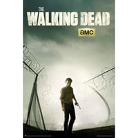 Walking Dead Domestic Poster
