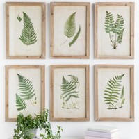 Fern Wood Wall Decor Set