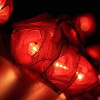 20 Red Rose Flower Fairy String Lights Wedding Party Floral Home