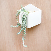 Pocket Wall Planter / Storage