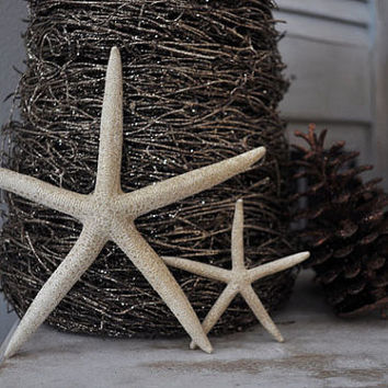 Starfish Ornaments, Beach Christmas, Hostess Gift, Beach Decor,  Starfish Christmas Ornaments, Nautical Ornaments, Set of 2