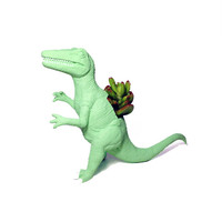Up-cycled Mint Green Deinonychus Dinosaur Planter - With Succulent Plant