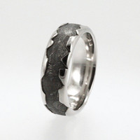Meteorite Ring inlaid in a Platinum Ring with a wavy profile.