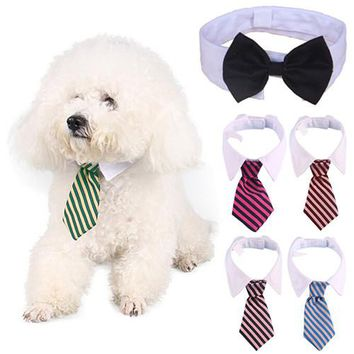 New arrival  Small Dog Cat Pet Fashion Cute Stripe Bow Tie Puppy Kitten White Collar Necktie