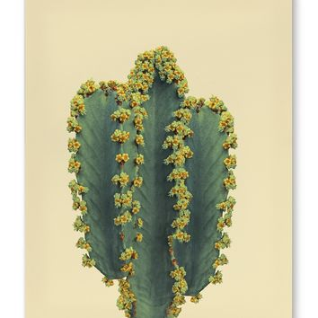 SOUTHWESTERN CACTUS Canvas Art By Vivid Atelier