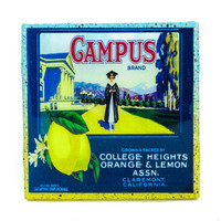 Campus (2) Brand - Vintage Citrus Crate Label - Handmade Recycled Tile Coaster