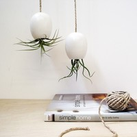 Ceramic Planter - Hanging Air Plant Pod Vase - Silky Matte White by mudpuppy