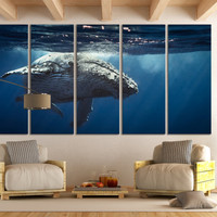 Underwater World Queen Whale Wall Art / Aquatic Fine Art Print Aquarium / Sea Life Art Nautical Ocean Art Canvas Print Room Wall Art