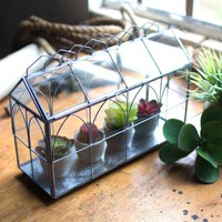 Glass and Wire Terrarium