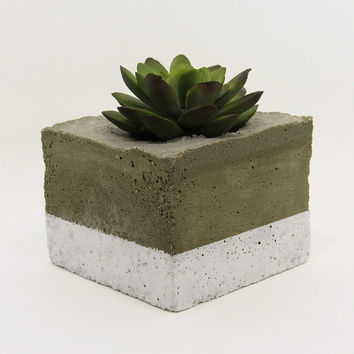 Concrete Planter, Succulent Planter, Indoor Planter, Modern Planter, White Planter, Cement Planter, Air Plant Holder, Succulent Pot