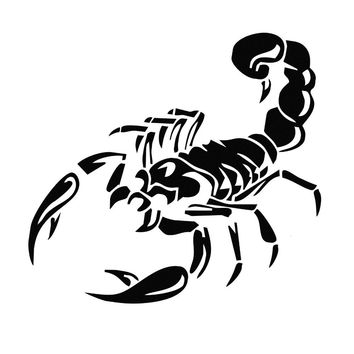 28cm Reflective 3D Scorpion Car Stickers Fridge Stickers Vinyl Decal Auto Sticker Window Sticker Home Acessories Decoration