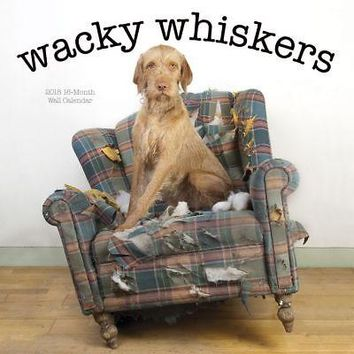 Avalon Wacky Whiskers Wall Calendar, More Dogs by Leap Year Publishing LLC