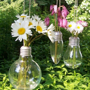 Light Bulb Flower Vases, glass vases, hanging on silver metal chains, set of 3.  Floral, flower arrangements, bouquets, gifts.