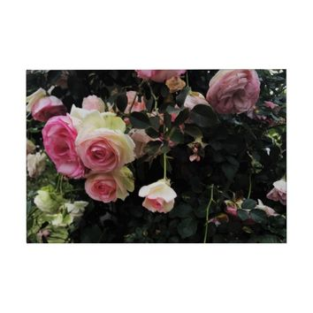 Spray of Pink Roses Guest Book