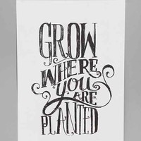 Matthew Taylor Wilson Grow Where You Are Planted Art Print- Multi One