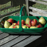Durable Green Trug |Plastic Basket | Kinsman Garden