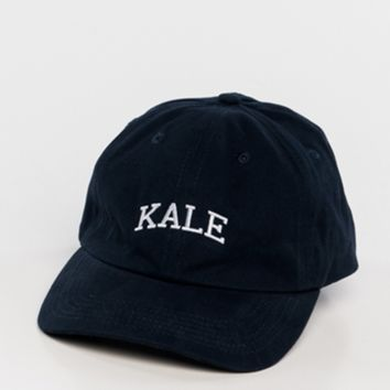 sub_urban riot - kale dad hat -  navy